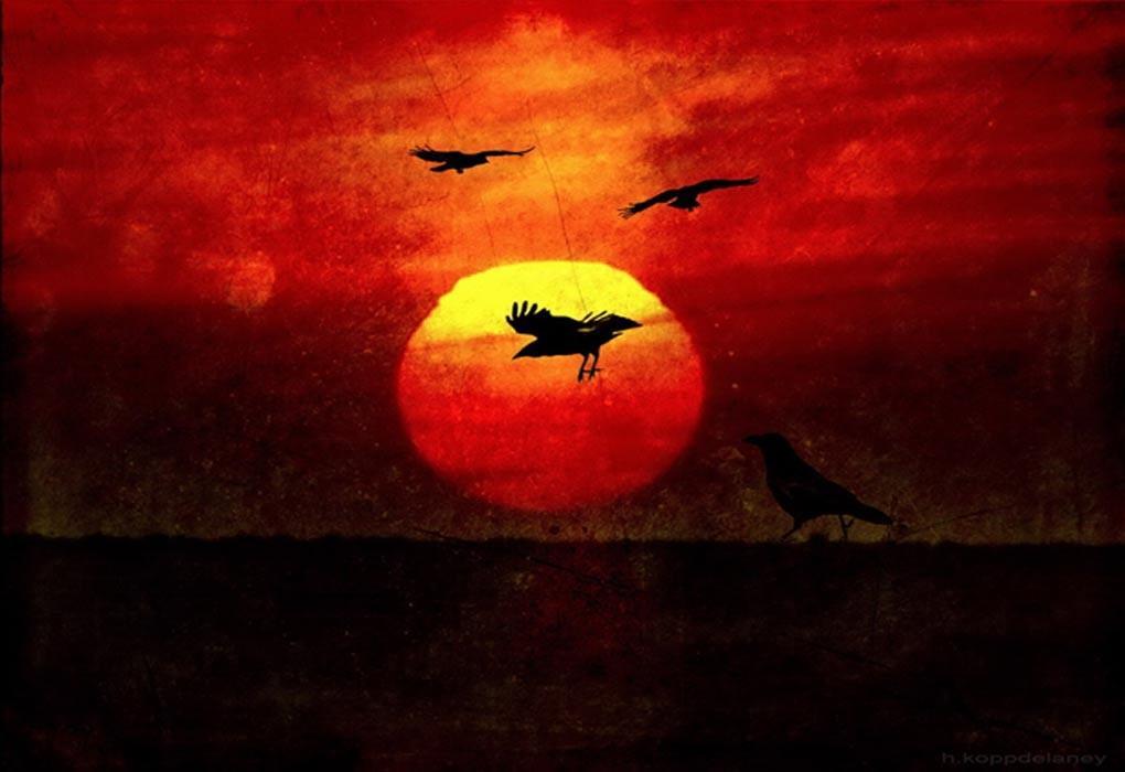 En muchos mitos de la creación de los nativos americanos, el cuervo juega un papel integral (CC BY-ND 2.0)