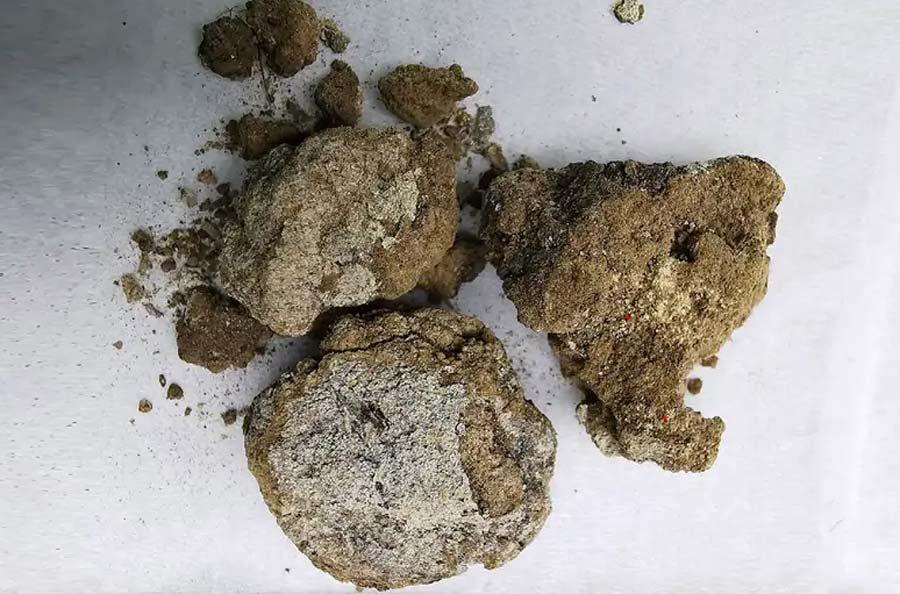 La crema facial encontrada en la tumba de un noble de 2.700 años en Liujiawa, China