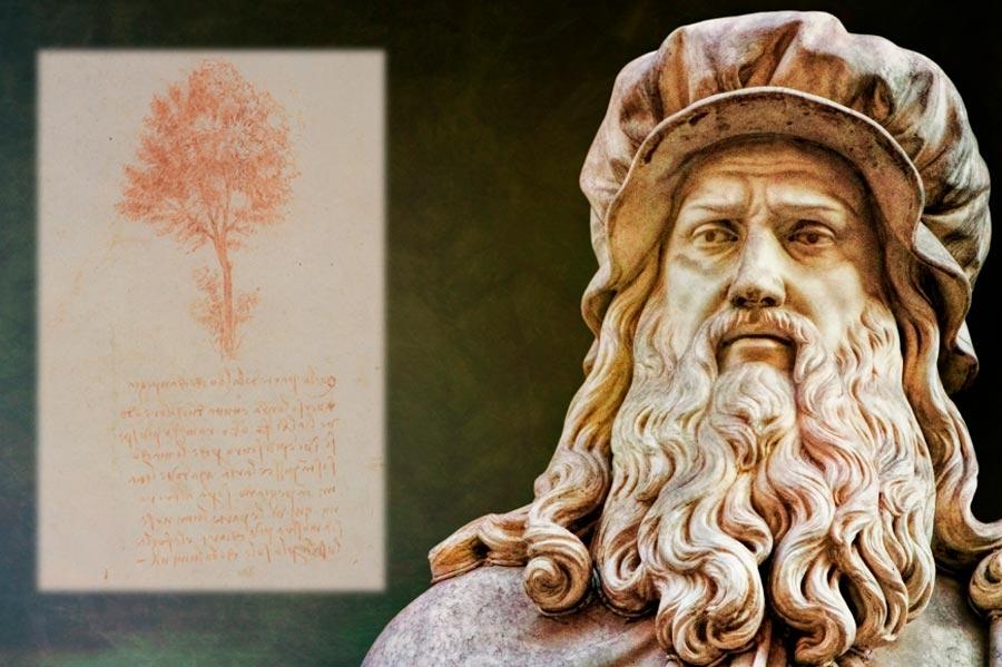 Una estatua de Leonardo da Vinci en Florencia, Italia. Recuadro; Verso un boceto de árbol de da Vinci, Fuente: ArTo/ Adobe Stock (recuadro, CC BY-SA 4.0)