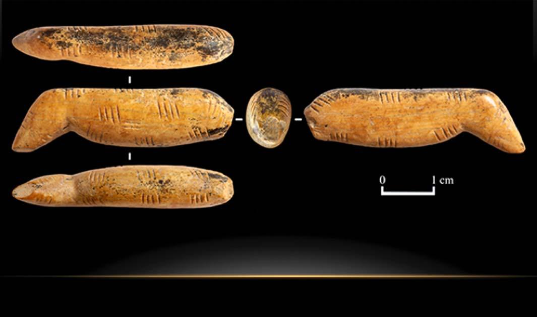 La figura del león cavernario encontrada recientemente en la cueva Denisova de Siberia. Fuente: The Siberian Times