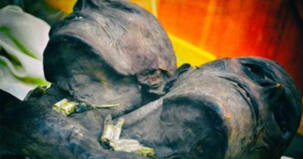 Detalle de las dos cabezas de Kap Dwa.