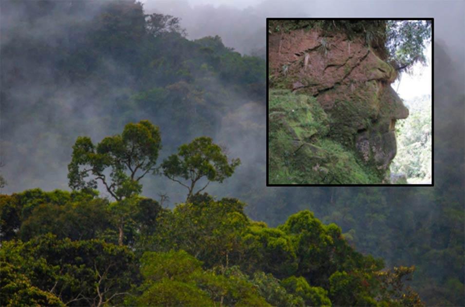 Principal: La selva amazónica. Recuadro: La cara de Harakbut.
