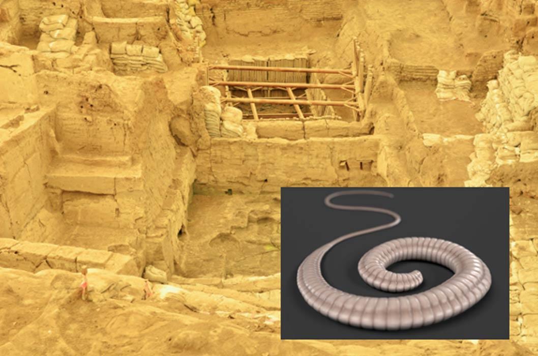 La antigua ciudad de Çatalhöyük (scarface / Adobe Stock). Recuadro: render 3D de un látigo (3drenderings / Adobe Stock)