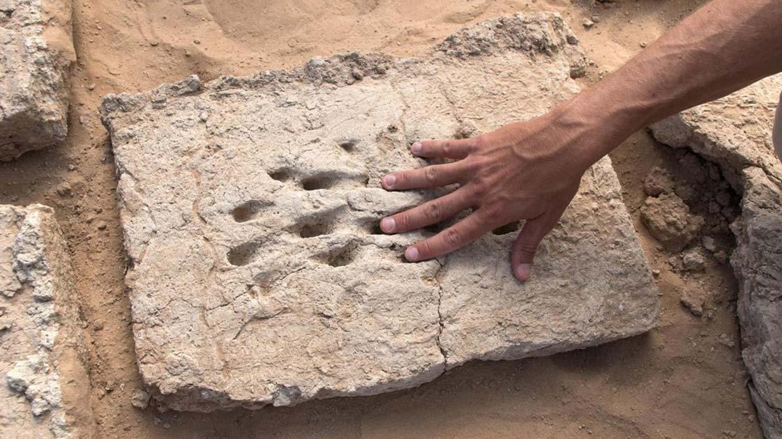 Las antiguas huellas dactilares de un trabajador que ayudó a construir un muro en la antigua Al Ain. Fuente: Departamento de Cultura y Turismo - Abu Dhabi / Fair Use.
