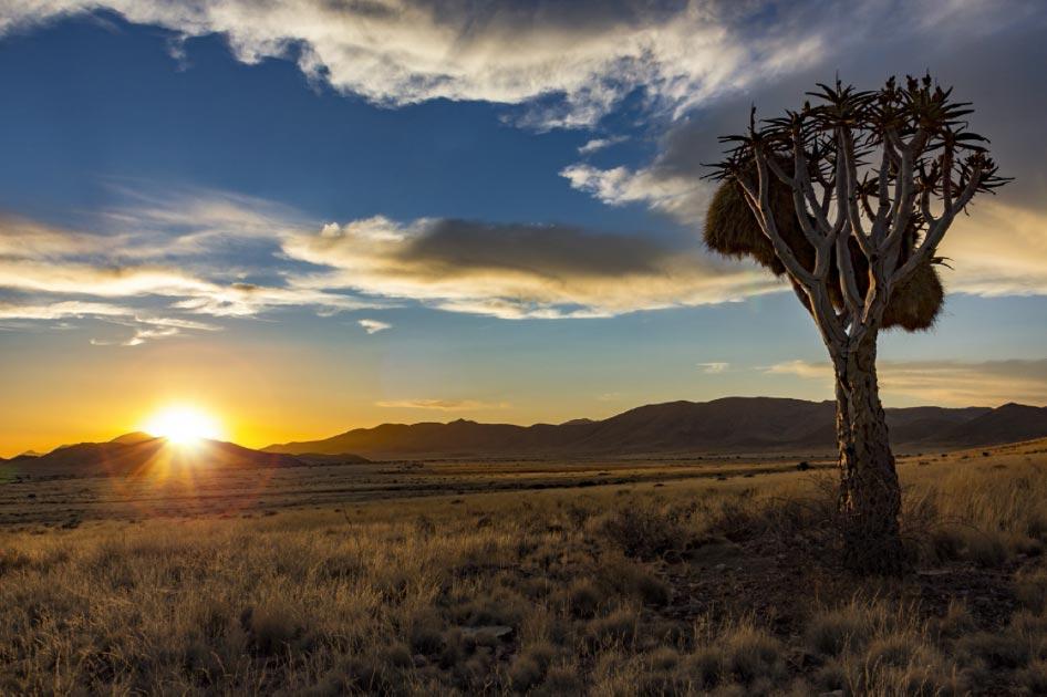 el suroeste de África, uno de los lugares de origen humano. Fuente: mezzotint_fotolia / Adobe Stock.