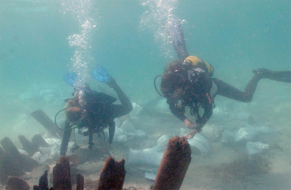 Estudiantes de arqueología marina examinan la cerámica cerca del mamparo en el naufragio israelí. Fuente: A. Yurman / Leon Recanati, Instituto de Estudios Marítimos de la Universidad de Haifa.