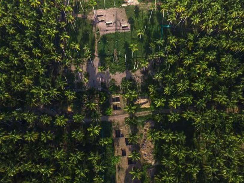 Vista aérea de las excavaciones en Keezhadi, un sitio arqueológico en Tamil Nadu que está reescribiendo la prehistoria india. Fuente: Jothi Ramalingam