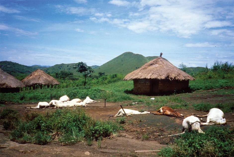 La tragedia del lago Nyos: una niebla demoníaca mortal en Camerún