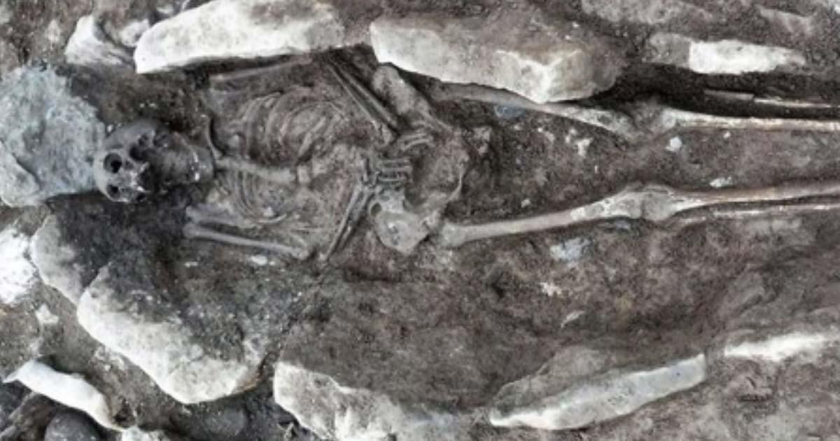 uno de los esqueletos encontrados debajo de Coleg Menai en Llangefni, Gales. Crédito: Arqueología Gales.