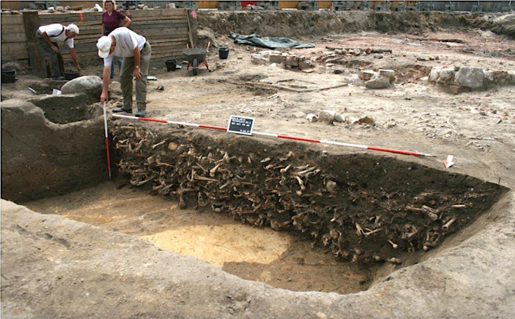 Restos humanos encontrados en el sitio de excavación en el cementerio medieval de Petriplatz, Berlín. Fuente: Ausgrabung Petriplatz