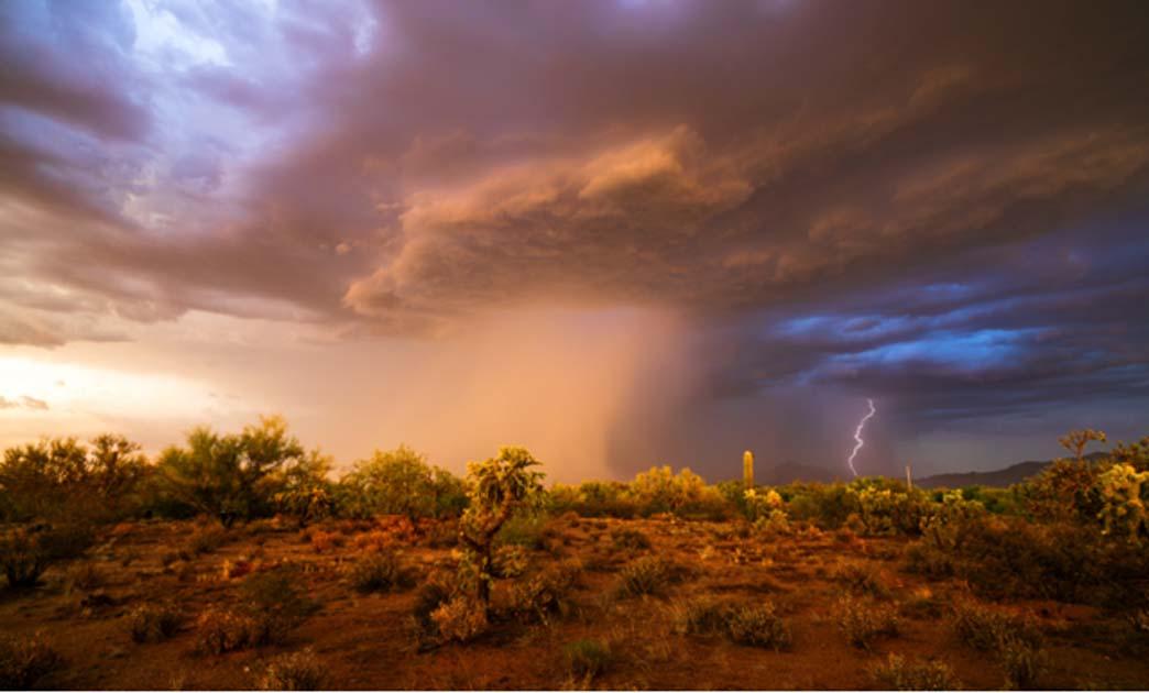 El estudio muestra que la migración humana podría haber seguido a los monzones al Levante. Fuente: mdesigner125/ Adobe Stock