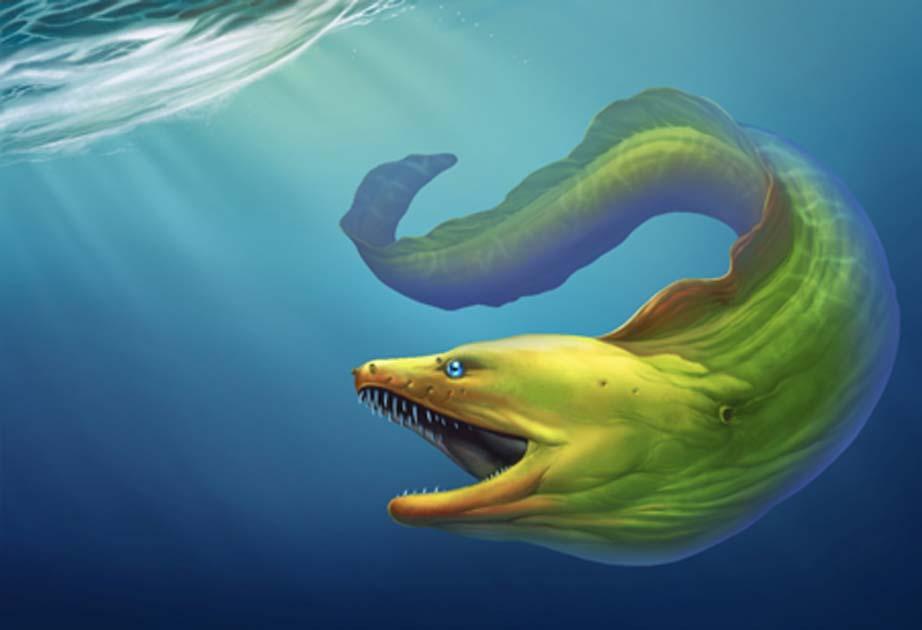 una anguila gigante. Crédito: Konstantin GerasimovAdobe Stock