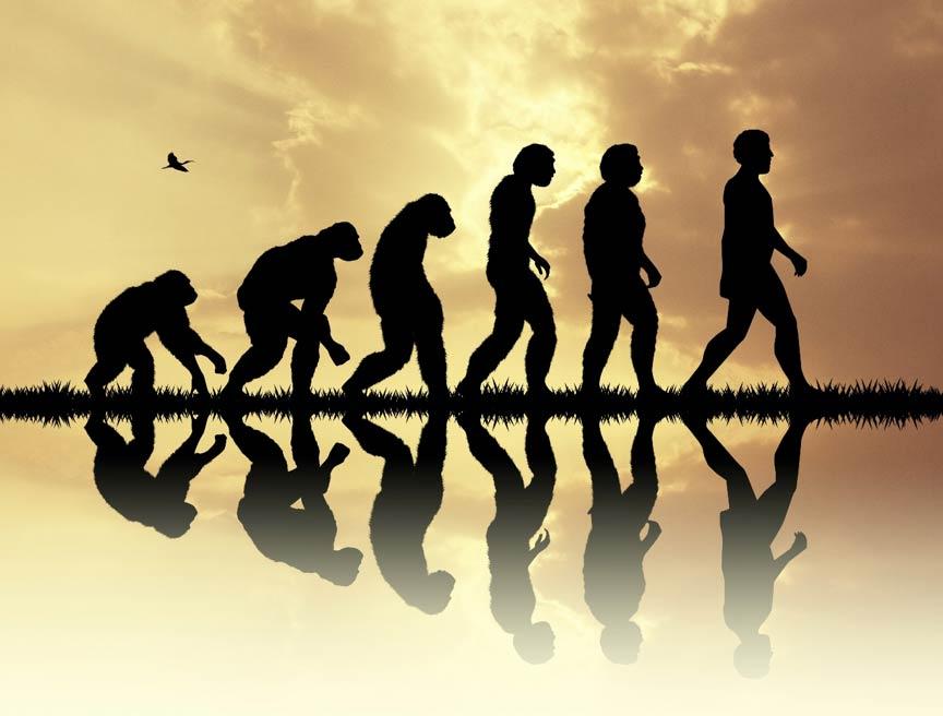 Un nuevo estudio sugiere tres fases clave en la ascendencia humana para que los científicos se enfoquen en la investigación futura.
