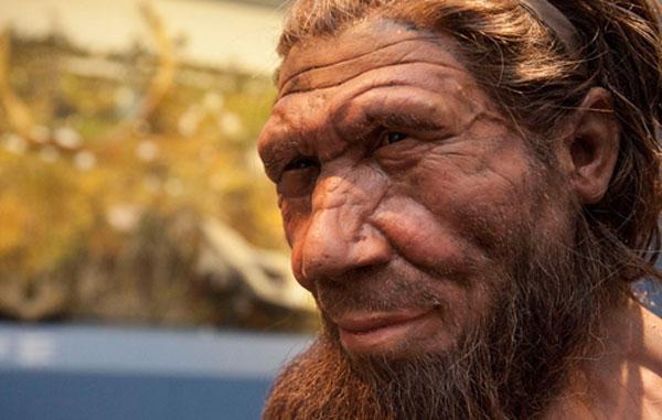 myths-neanderthals.jpg