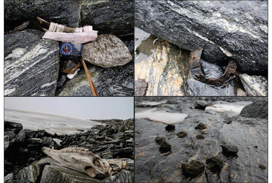 Estos hallazgos relacionados con caballos de Lendbreen indican la ruta de un sendero nórdico de montaña: arriba a la izquierda) mandíbula; arriba a la derecha) herradura; abajo a la izquierda) cráneo de caballo; abajo a la derecha) estiércol de caballo. Fuente: J.H. Barrett y Arqueología Glaciar