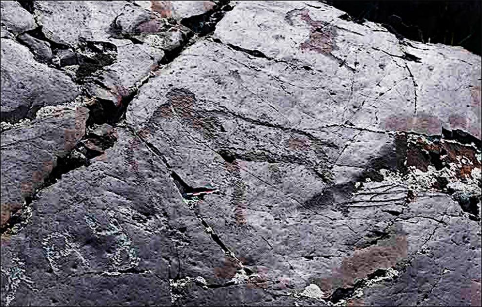 El arte rupestre paleolítico del mamut descubierto en Baga-Oygur III a principios de la década de 2000. Fuente: Instituto de Arqueología y Etnografía SB RAS / Siberian Times