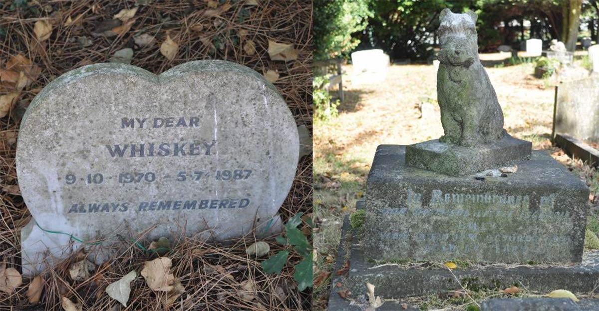 Los diseños de lápidas difieren en los cementerios de mascotas, estos se encuentran en el cementerio de mascotas del Dispensario del Pueblo para Animales Enfermos en Ilford: izquierda) Whisky (m. 1987); derecha) Billy (m. 1951).