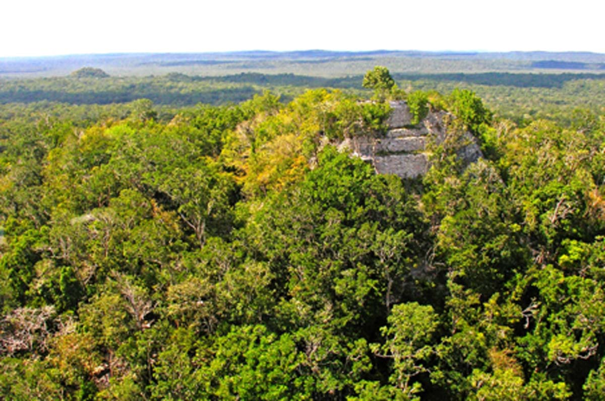 : Pirámide de La Danta, El Mirador, Guatemala Fuente: Jarvis, D / CC BY-SA 2.0
