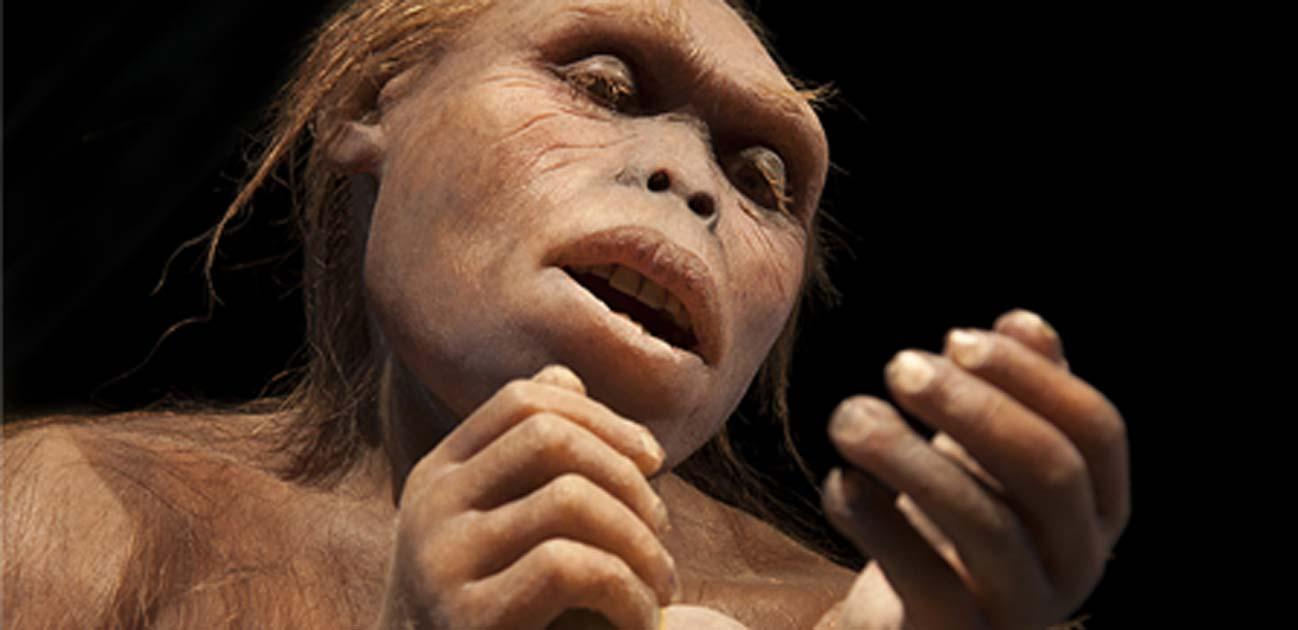 Early hominin trabaja con herramientas. (procy_ab / AdobeStock)