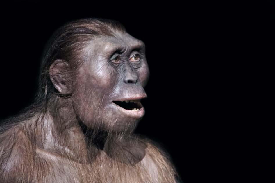 Representación de una antigua sonrisa humana Fuente: procy_ab/ Adobe Stock