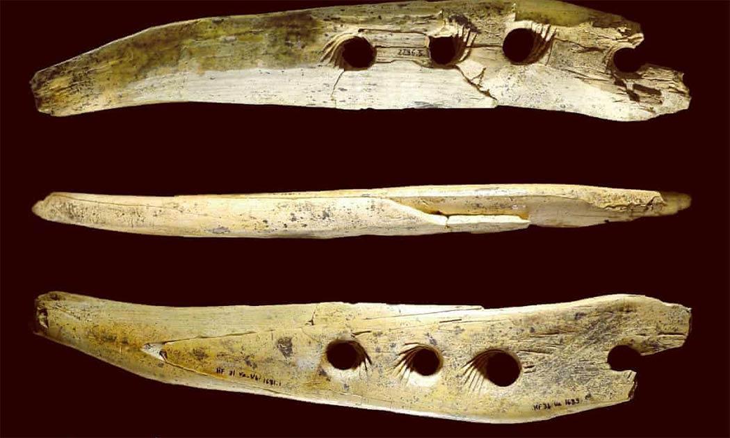 herramienta de cordaje de hueso de mamut de la Edad de Piedra encontrada en la cueva Hohle Fels en Alemania que los científicos ahora reconocen como una herramienta para hacer cuerdas desde hace 40,000 años