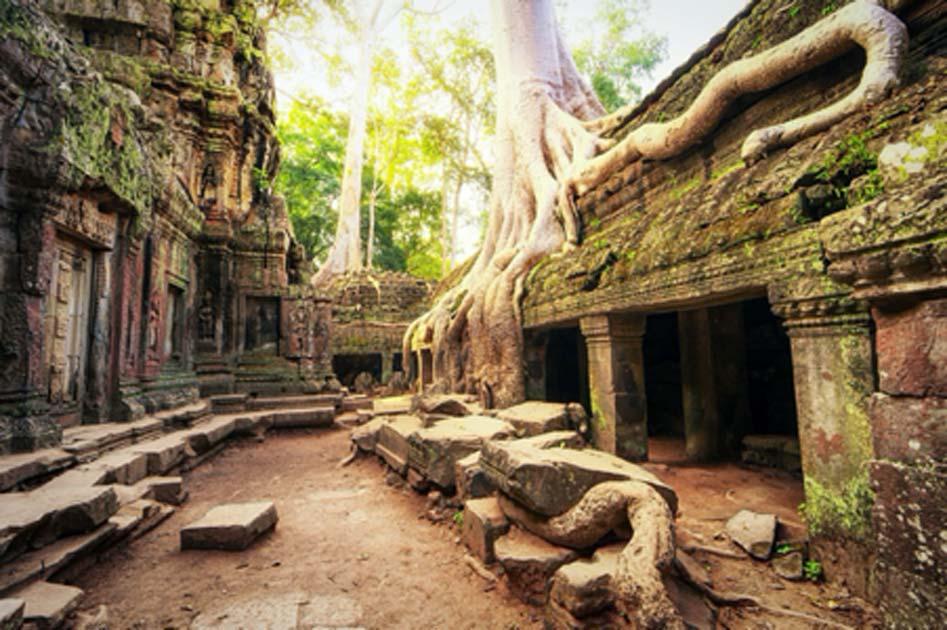 Ciudad del Imperio Khmer encontrada al norte de Angkor Wat. Aquí, Ta Prom Khmer antiguo templo budista en el bosque de la selva. Fuente: Banana Republic / Adobe Stock
