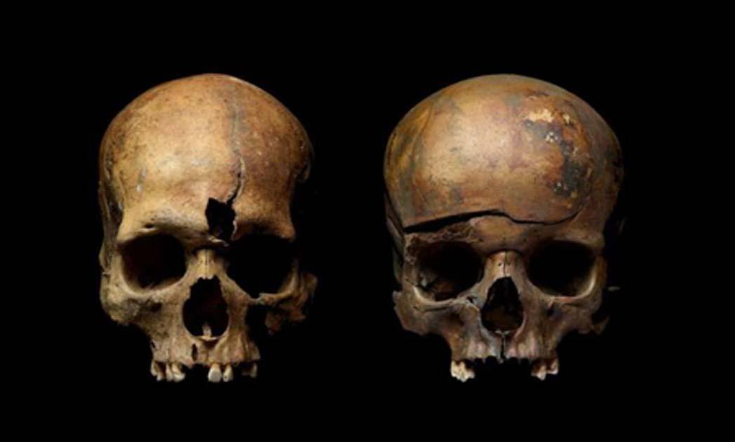 Cráneos de una fosa común en Yaroslavl, Rusia, que muestran rastros de violencia. Fuente: Instituto de Arqueología, Academia de Ciencias de Rusia.