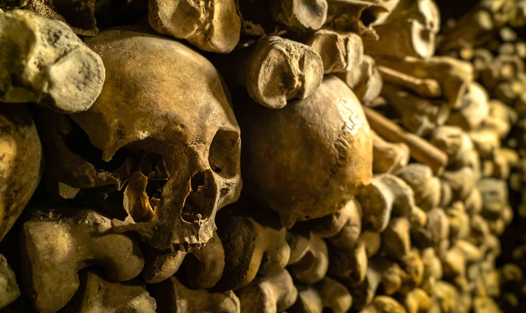 se descubrió una pared de huesos en la catedral de Saint Bavo en Gante, Bélgica. Fuente: garrykillian / Adobe Stock.