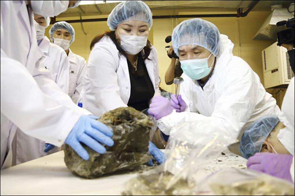 """En estas fotografías de laboratorio podemos observar cómo se están extrayendo la piel y el tejido muscular de los restos de este antiguo animal, bautizado por sus descubridores como """"Dina"""". Fotografías: Galina Mozolevskaya/YSIA"""