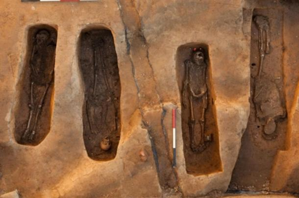 Los cuatro esqueletos descubiertos en la antigua iglesia de Jamestown en Jamestown, Estados Unidos (Smithsonian)