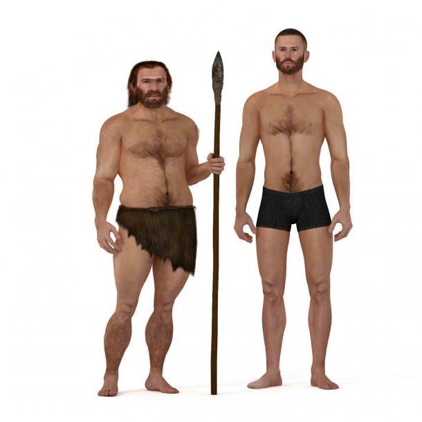 Un neandertal (izquierda) de pie junto a un Homo sapiens moderno. ¡Casi el 20% del genoma neandertal existe en humanos modernos! (nicolasprimola / Adobe Stock)