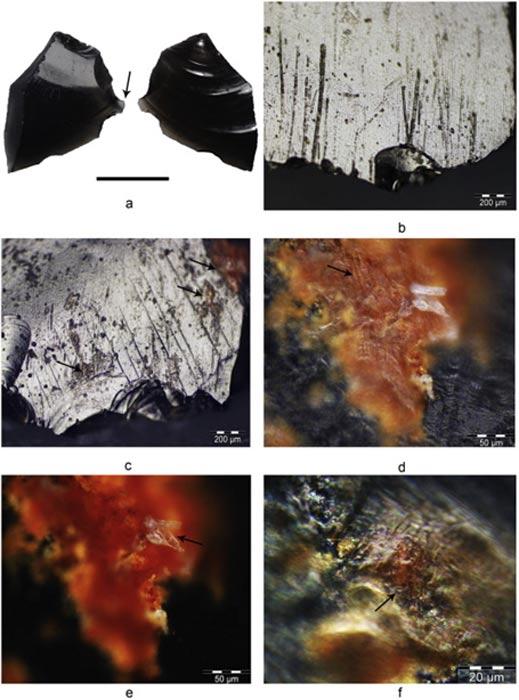 Estas herramientas, con rastros de sangre, ocre y grasa, fueron descubiertas en el yacimiento de Nanggu y su antigüedad está datada en unos 3.000 años (Fotografía: Journal of Archaeological Science)