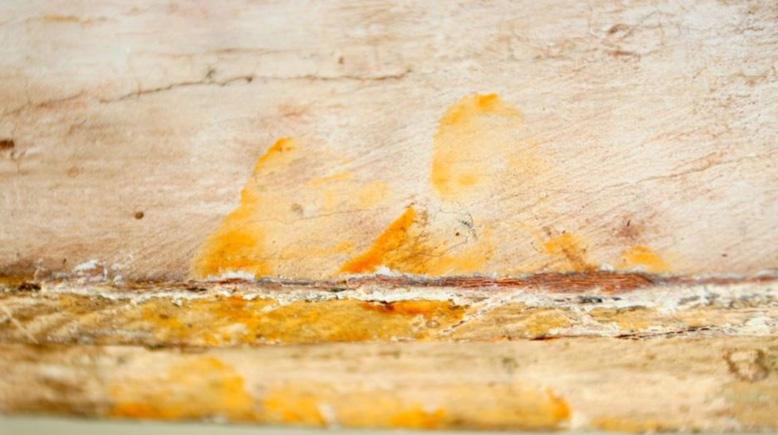 Huellas dactilares halladas en la superficie interior de la tapa de un ataúd egipcio de hace 3.000 años. Fotografía: Museo Fitzwilliam, Cambridge.