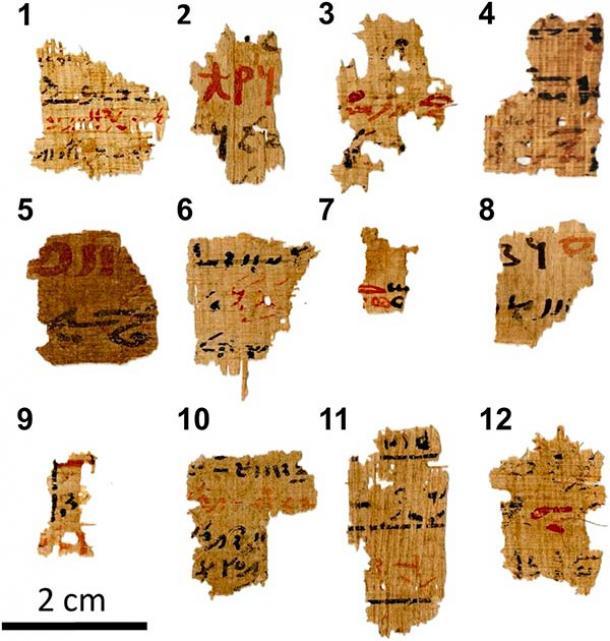 Imágenes de luz visible de las 12 muestras de escritura egipcia con los números secuenciales asignados durante los experimentos escritos en negrita. Los fragmentos de papiro provienen de manuscritos más grandes de la biblioteca del templo de Tebtunis que están inscritos con tinta roja y negra (T. Christiansen et al. / PNAS)