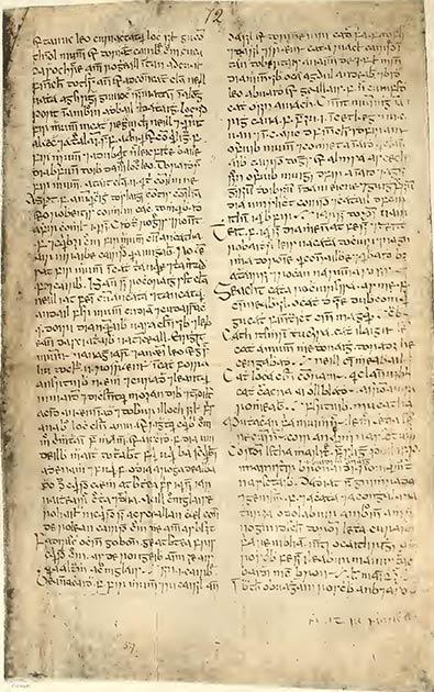 Una página del Libro de Lismore, el libro medieval que una familia aristocrática inglesa devolvió recientemente a Irlanda. (Dominio público)