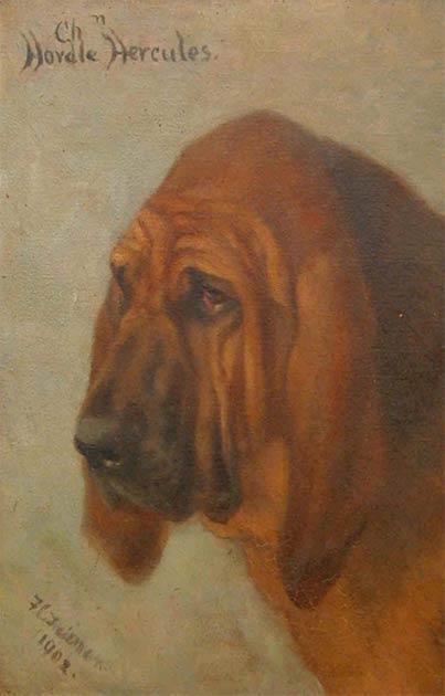 Donnchadh se ha convertido en un perro famoso debido a sus acciones para salvar a su dueño Robert the Bruce en 1300. (Dominio público)
