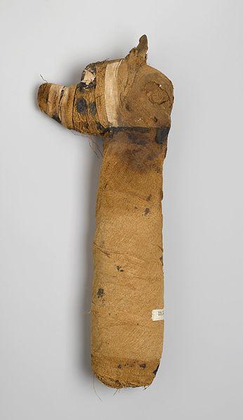 Perro momificado, 305 a. C.-395 d. C. Restos animales, lino, pintado. Museo de Brooklyn