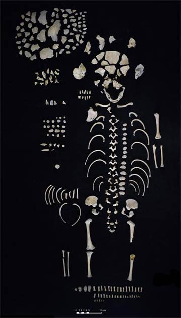 Los restos de un esqueleto juvenil fueron recuperados del baño de sudor maya de Los Sapos, lo que sugiere una comprensión temprana de la estructura como un lugar de nacimiento y creación humana. (Proyecto Arqueológico Regional San Bartolo-Xultun)