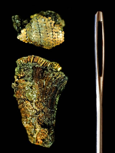 Detalle de la decoración de la empuñadura de oro de la daga, que se muestra junto a una aguja de coser para que se pueda apreciar la escala