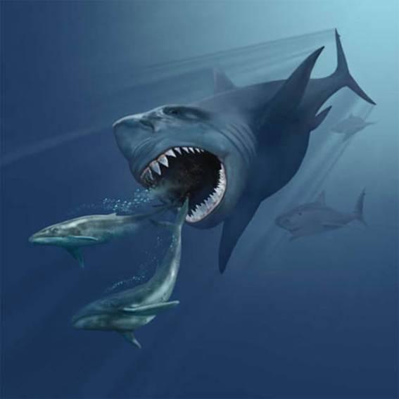 Recreación artística de un Megalodon persiguiendo a dos ballenas (Wikimedia Commons)