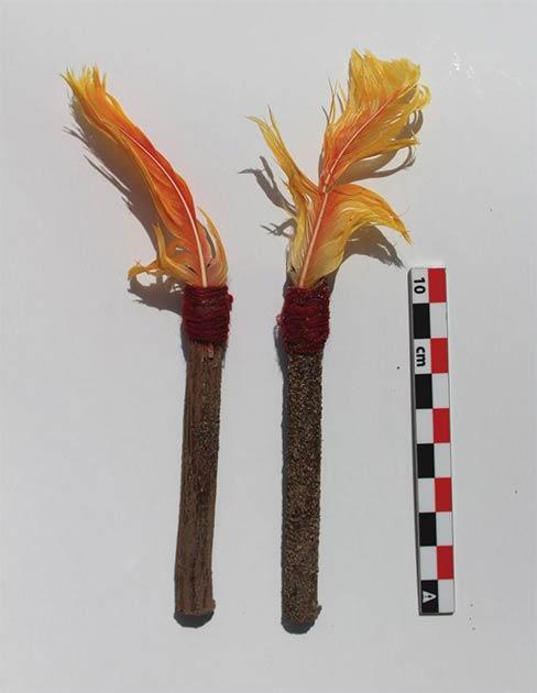 Se habían atado plumas anaranjadas de aves tropicales a un extremo de un palo de madera y se habían colocado como decoración para los sacrificios de llamas blancas. (LM Valdez / Antiquity Publications Ltd)