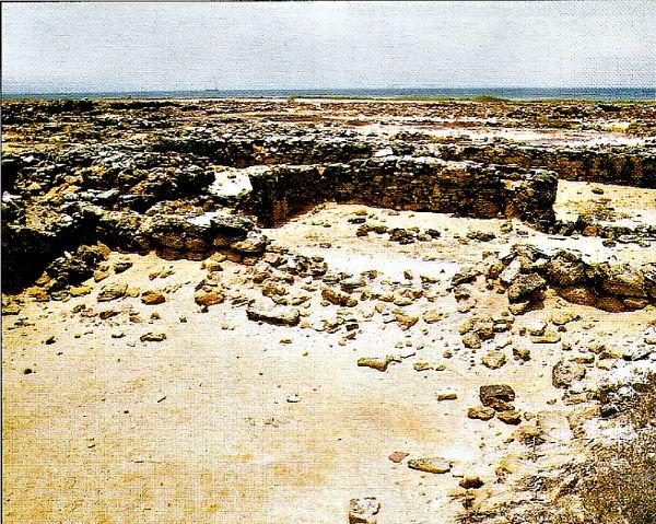Algunas de las ruinas de Nueva Cádiz (Wikimedia Commons)