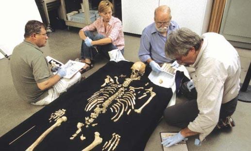 Los restos óseos del hombre de Kennewick. Foto de Chip Clark/Smithsonian Institution