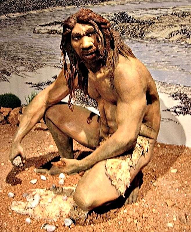 Reconstrucción de un Homo heidelbergensis, especie de la que proceden los Homo neanderthalensis, comúnmente conocidos como Neandertales. (Wikimedia Commons)