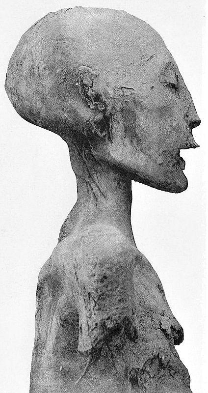 Fotografía de perfil de la momia de la Dama Joven que, según los estudios genéticos correspondería a la madre de Tutankamón. Según Marc Gabolde se trata de la momia de Nefertiti. (Wikimedia Commons)