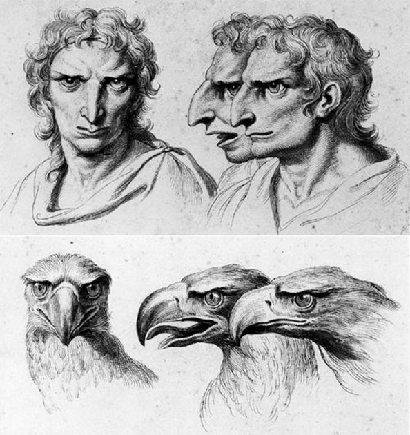 Ilustración que compara a un individuo con nariz aguileña, cejas pesadas y arco nasal prominente con la cabeza de un águila por Charles Le Brun (Imagen: CC BY 4.0).