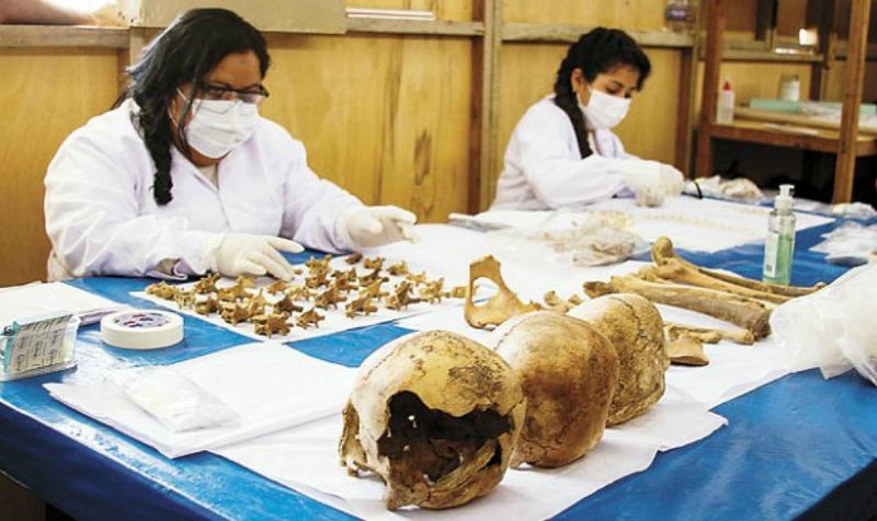 Investigadoras estudiando y analizando los restos óseos recuperados. (Fotografía: La República)