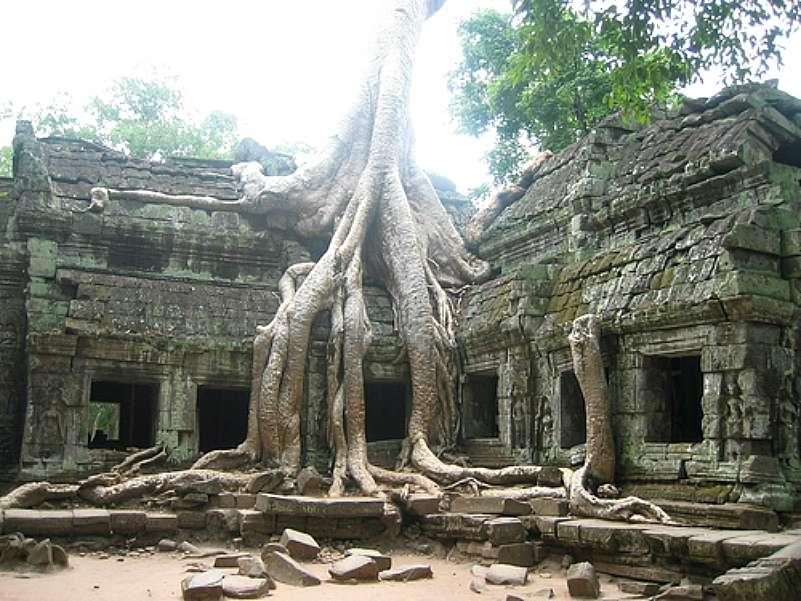 Tras ser abandonada, la selva invadió la mayoría de templos de Angkor. (Flickr)