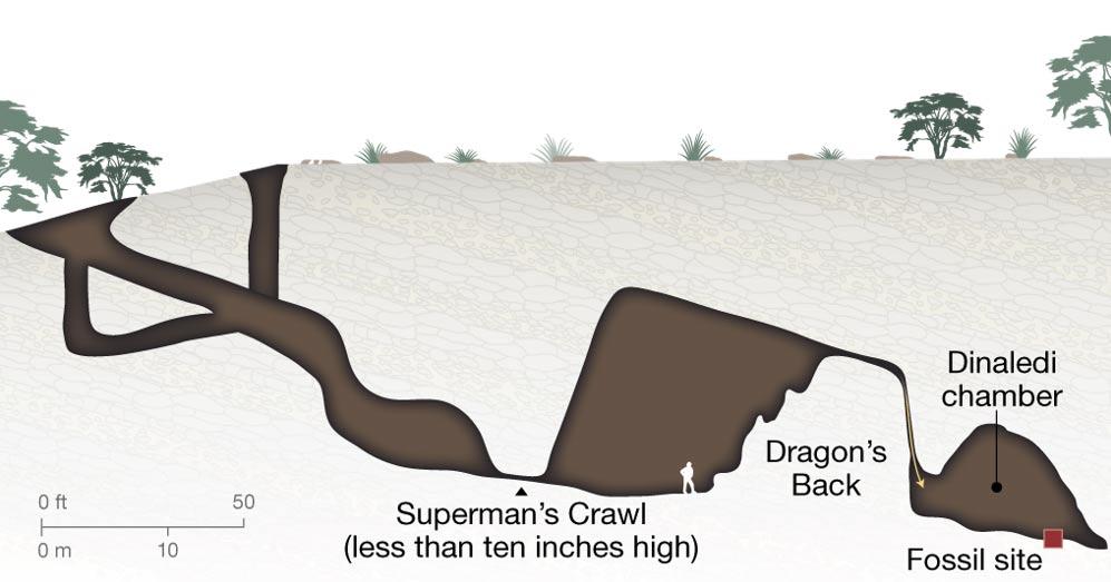 Ilustración de una sección del terreno que muestra los túneles casi intransitables que conducen a la cámara funeraria. Imagen: Jason Treat, Equipo de NGM; Mapas NGM, fuente: Lee Berger, Wits