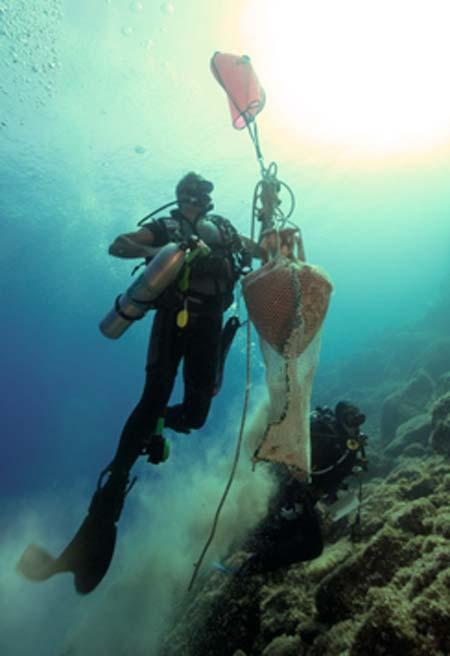 Ánfora antigua intacta llevada a la superficie como parte del estudio Ephorate of Underwater Antiquities 2019. (Ministerio Helénico de Cultura y Deportes)